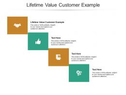 Lifetime Value Customer Example Ppt Powerpoint Presentation Pictures Portrait Cpb