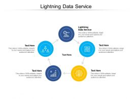 Lightning Data Service Ppt Powerpoint Presentation Summary Example Introduction Cpb
