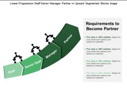 Linear Progression Staff Senior Manager Partner In Upward Segmented Blocks Image