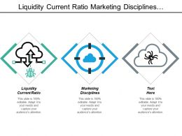 Liquidity Current Ratio Marketing Disciplines Customer Relationship Management Survey Cpb