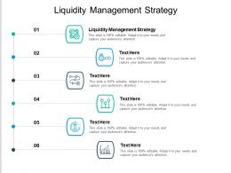Liquidity Management Strategy Ppt Powerpoint Presentation Layouts Aids Cpb