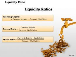 Liquidity Ratio Powerpoint Presentation Slide Template
