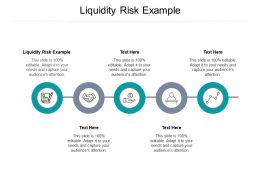 Liquidity Risk Example Ppt Powerpoint Presentation Summary Show Cpb