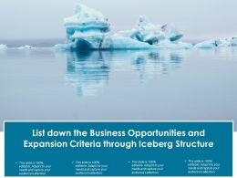 List Down The Business Opportunities And Expansion Criteria Through Iceberg Structure