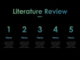 Literature Review Ppt Powerpoint Presentation File Files