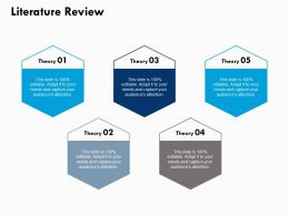 Literature Review Ppt Powerpoint Presentation File Gallery