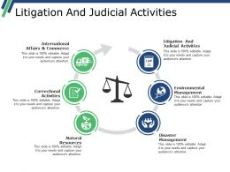 Litigation And Judicial Activities Ppt Examples Slides