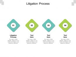 Litigation Process Ppt Powerpoint Presentation Layouts Graphics Cpb