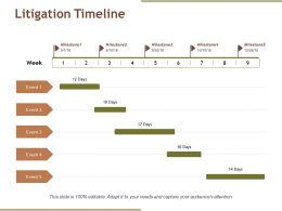 Litigation Timeline Powerpoint Slide Themes