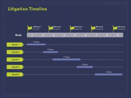 Litigation Timeline Ppt Powerpoint Presentation Model Show