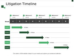 Litigation Timeline Ppt Sample File