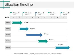Litigation Timeline Ppt Styles File Formats