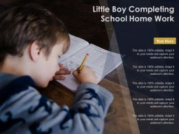 Little Boy Completing School Home Work