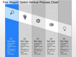 ll Five Staged Option Vertical Process Chart Powerpoint Template