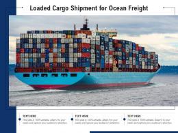 Loaded Cargo Shipment For Ocean Freight