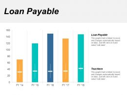 Loan Payable Ppt Powerpoint Presentation File Show Cpb