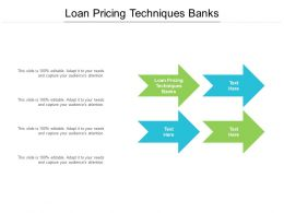 Loan Pricing Techniques Banks Ppt Powerpoint Presentation Portfolio Show Cpb