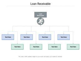 Loan Receivable Ppt Powerpoint Presentation Ideas Professional Cpb
