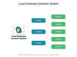 Local Employee Incentive System Ppt Powerpoint Presentation Styles Templates Cpb
