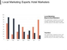 Local Marketing Experts Hotel Marketers Ppt Powerpoint Presentation Portfolio Good Cpb