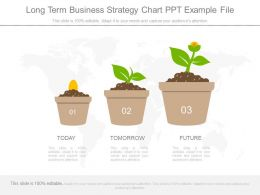 Long Term Business Strategy Chart Ppt Example File