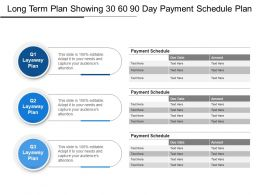 Long Term Plan Showing 30 60 90 Day Payment Schedule Plan