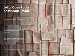 Lot Of Open Books Knowledge Image
