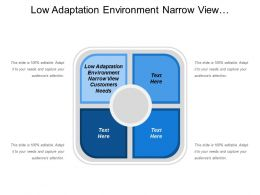Low Adaptation Environment Narrow View Customers Needs Groups Customers