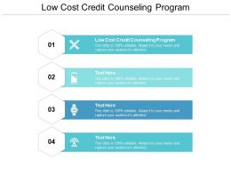 Low Cost Credit Counseling Program Ppt Powerpoint Presentation Visual Aids Slides Cpb
