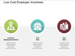 Low Cost Employee Incentives Ppt Powerpoint Presentation File Graphic Tips Cpb