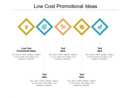Low Cost Promotional Ideas Ppt Powerpoint Presentation Styles Deck Cpb