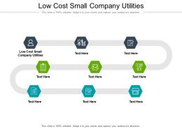 Low Cost Small Company Utilities Ppt Powerpoint Presentation Show Model Cpb