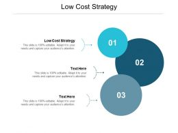 Low Cost Strategy Ppt Powerpoint Presentation File Example Cpb
