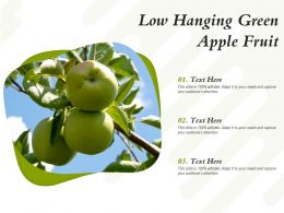 Low Hanging Green Apple Fruit