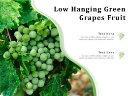 Low Hanging Green Grapes Fruit