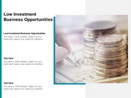Low Investment Business Opportunities Ppt Powerpoint Presentation Portfolio Templates Cpb