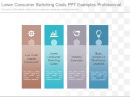 Lower Consumer Switching Costs Ppt Examples Professional