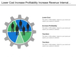 Lower Cost Increase Profitability Increase Revenue Internal Process