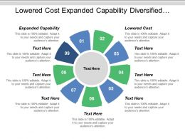 Lowered Cost Expanded Capability Diversified Portfolio Global Investment