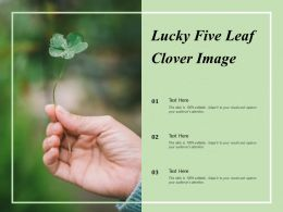 Lucky Five Leaf Clover Image