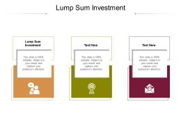 Lump Sum Investment Ppt Powerpoint Presentation Show Objects Cpb