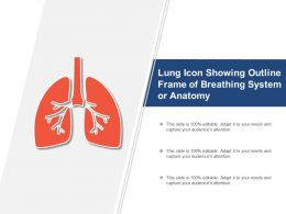 Lung Icon Showing Outline Frame Of Breathing System Or Anatomy