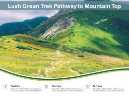 Lush Green Trek Pathway To Mountain Top