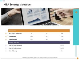 M And A Synergy Valuation Combined Ppt Powerpoint Presentation Icon Visuals