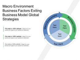 Macro Environment Business Factors Exiting Business Model Global Strategies