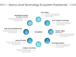 Macro Level Technology Ecosystem Framework