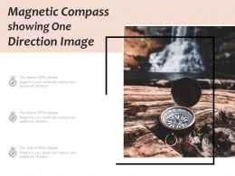 Magnetic Compass Showing One Direction Image