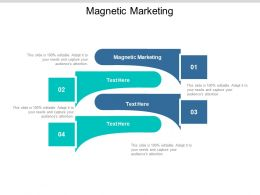 Magnetic Marketing Ppt Powerpoint Presentation Styles Model Cpb