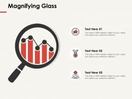 Magnifying Glass Big Data Ppt Powerpoint Presentation Professional Templates