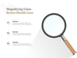 Magnifying Glass Brown Handle Icon